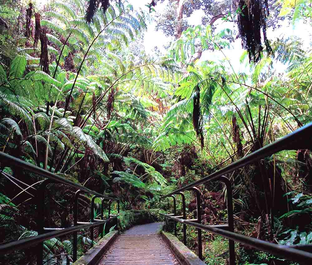 You Tube The Island  Mai