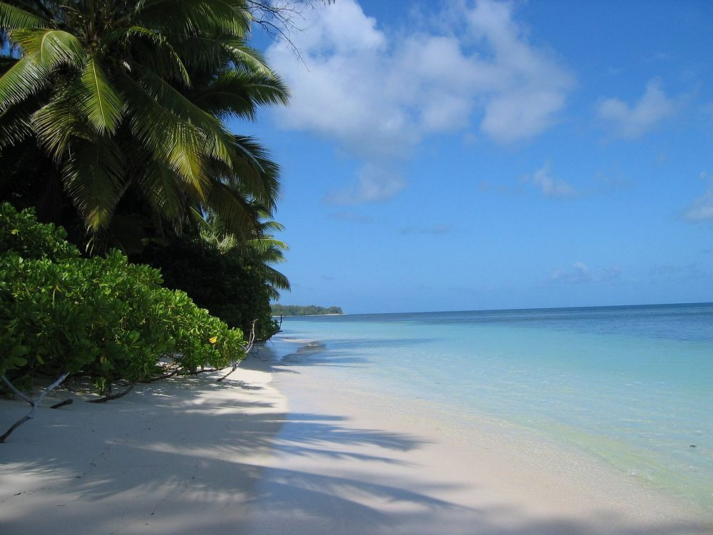 The beach - Desroches Island Resort. Copyright Michael Cottam.