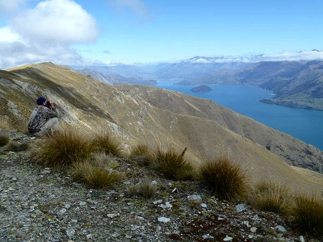 Pure New Zealand - Pure New Zealand Hunting.