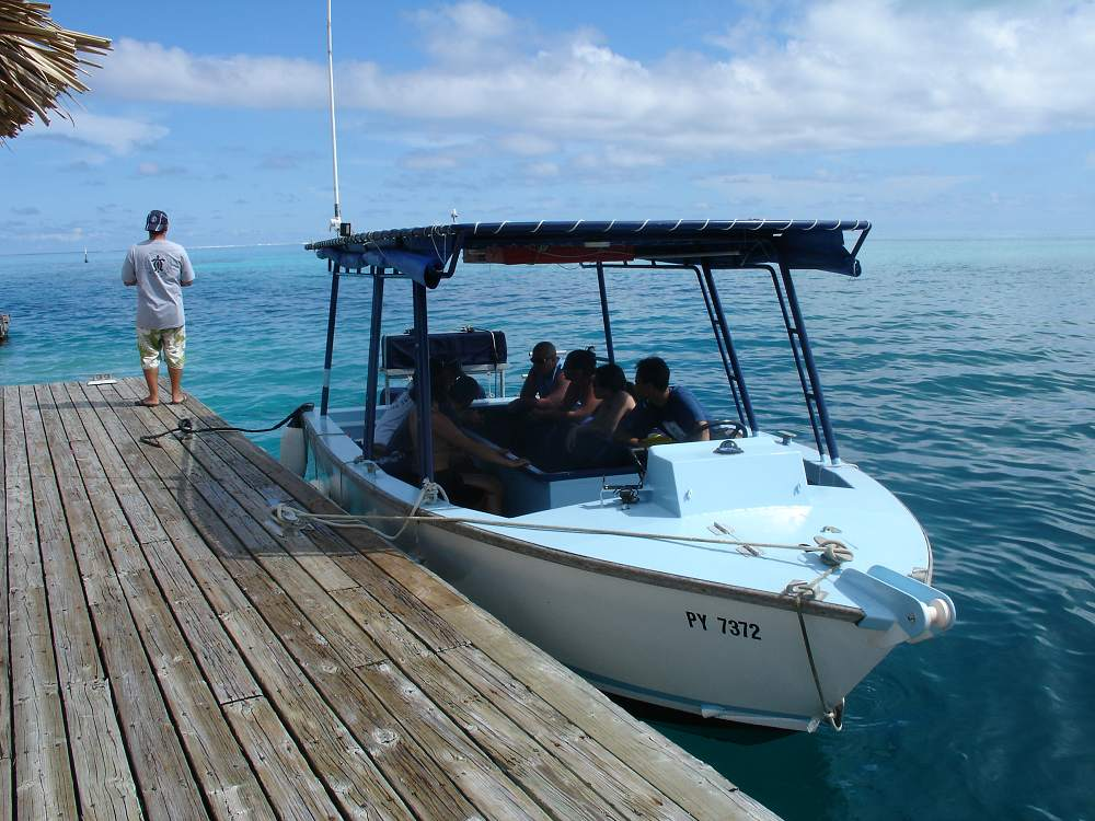 Glass Bottom Boat Tour - Glass Bottom Boat. Copyright Moana Adventure Tours.