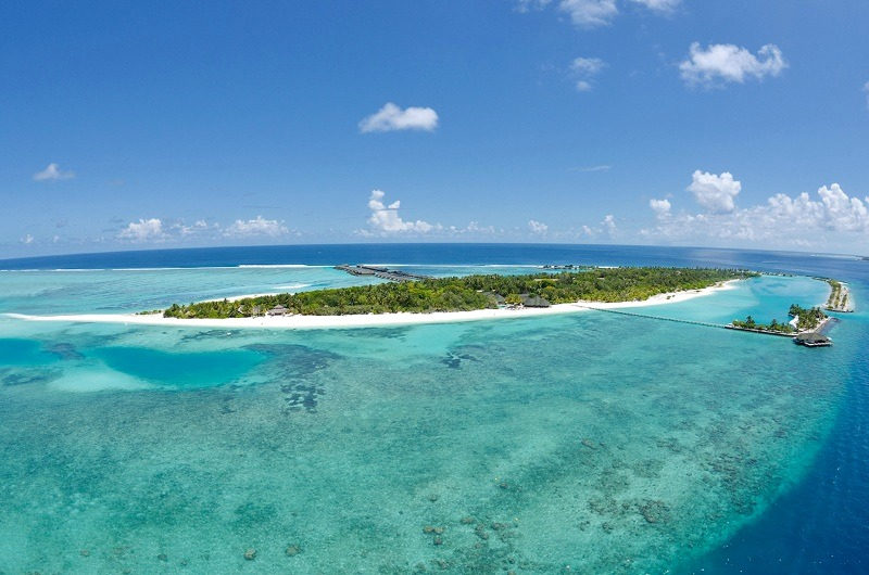Paradise Island Resort Spa Maldives Reviews Pictures Map